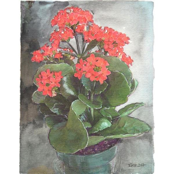 Suluboya / Çiçek